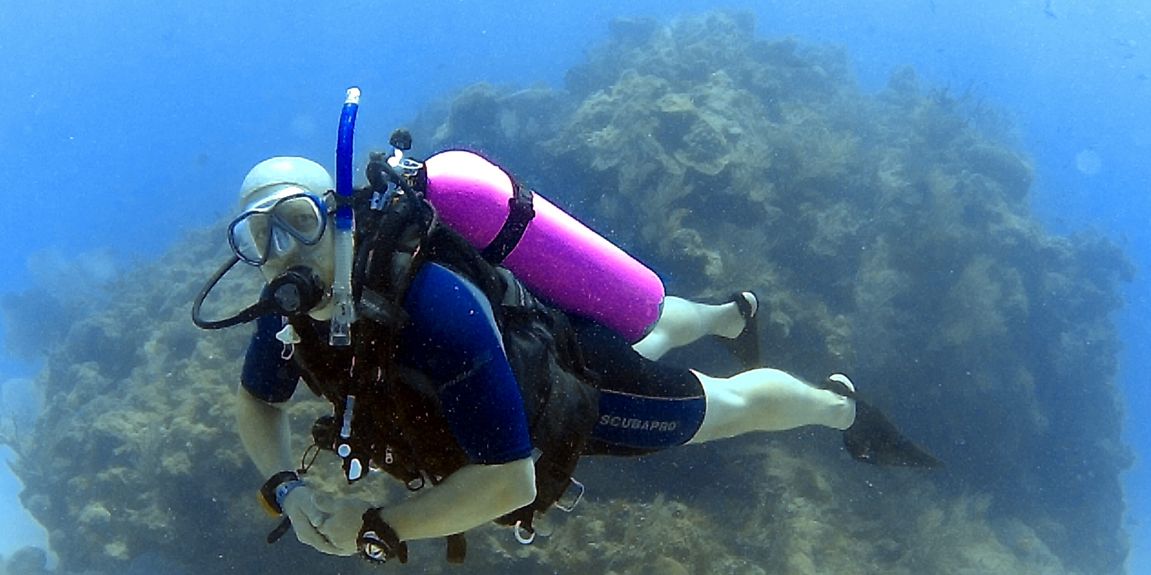 Real Men Wear Pink Dive In The Dominican Republic At Reduced Rates